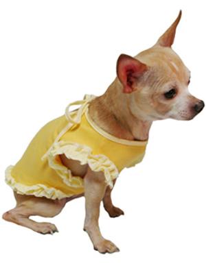 Yellow dog dress