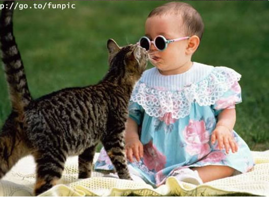 Baby & Pets