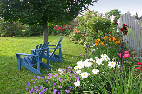 Backyard with lillies and lawn furniture
