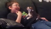 Boy teaches puppy how to howl (VIDEO)
