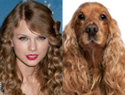 Celebrities that resemble animals