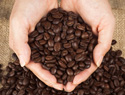 How to oven-roast your own coffee