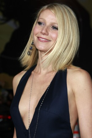 "The first movie from Marvel Comics own studio, ""Iron Man"" is truly Paltrow's"