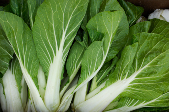 All about bok choy
