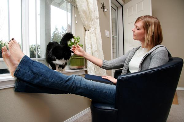 cats_tidy_woman - Felicitations Feline !  - Tira-Pasagad | Saksak-Sinagol
