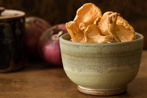 Chanterelle+mushroom+season