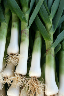 Leeks