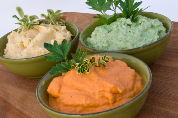 Variety of Dips
