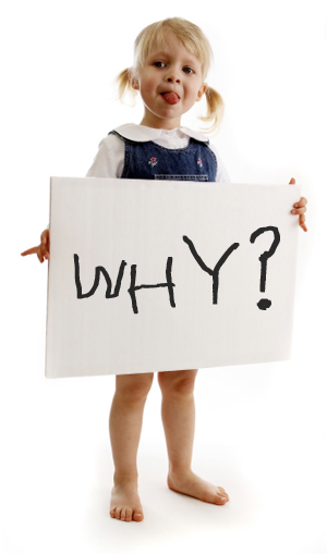 """Surviving the """"Why?"""" phase"""
