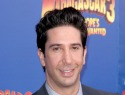David Schwimmer helps NYC police in stabbing case