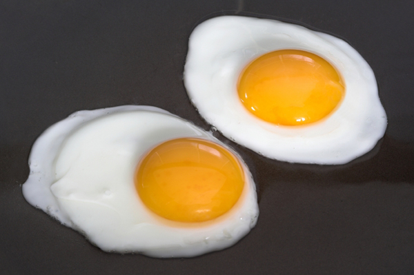 eggs contaminated with bacteria