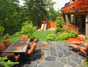 New options for your lawn: Alternatives to grass