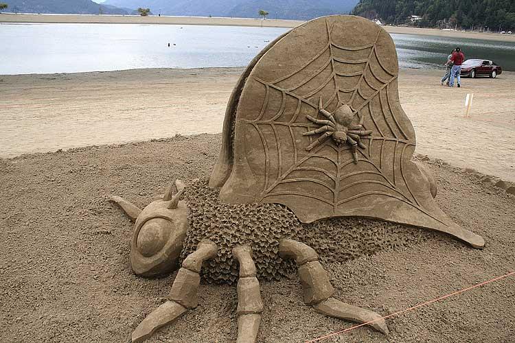 Create your beachfront estate