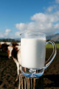 Mug of Organic Milk