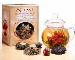 Numi Dancing Leaves Teapot