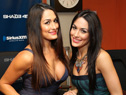 Celebs 101: 10 Things you didn't know about the Bella Twins