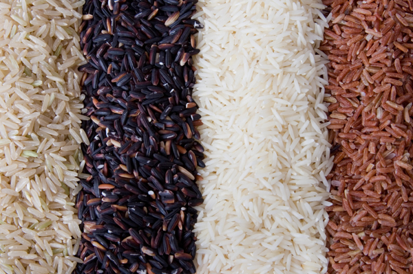Variety of Rice