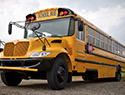 School bus driver leaves sick kid on the side of the road