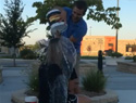 This Ice Bucket Challenge ended in an adorable proposal (VIDEO)