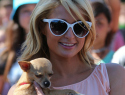 Want to name Paris Hilton's new puppy?