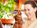 Top 5 online pet stores for standout pet gear