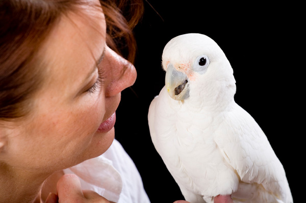 Woman with White Parrot