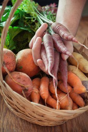 Organic root vegetables