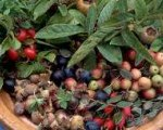Rose Hip Marmalade