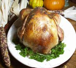 Roasted Turkey with Fresh Herbs and Pan Gravy