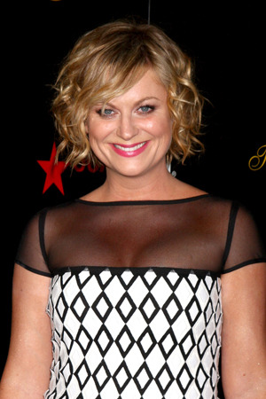 Amy Poehler on her next roles