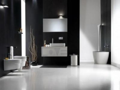 Black and white bathroom with sticks