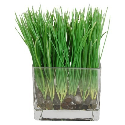 "Grass in a Glass Vase with Stones 15""x17""x17"""