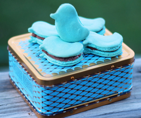 Blue bird macarons