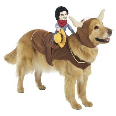 Cowboy Bull Rider Pet Costume