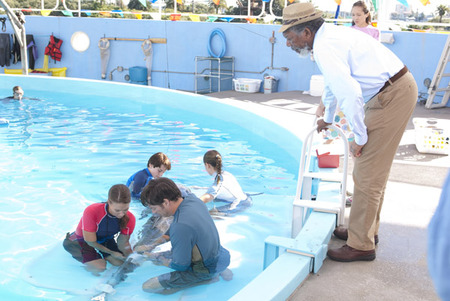 "Harry Connick Jr. in ""Dolphin Tale"""
