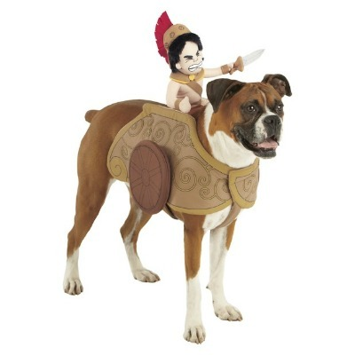Gladiator Chariot Pet Costume