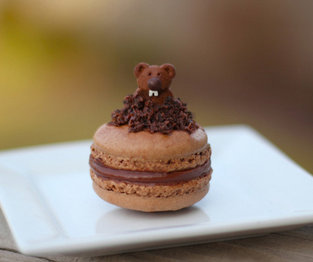Ground hog macarons