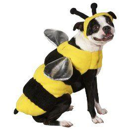 Dog Bumblebee Costume
