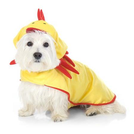 Chicken Costume for Dogs