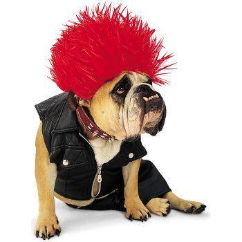 Punk Dog Costume
