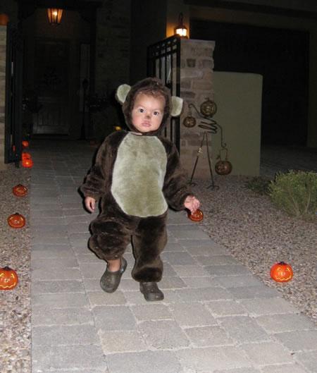 He's a cute bear