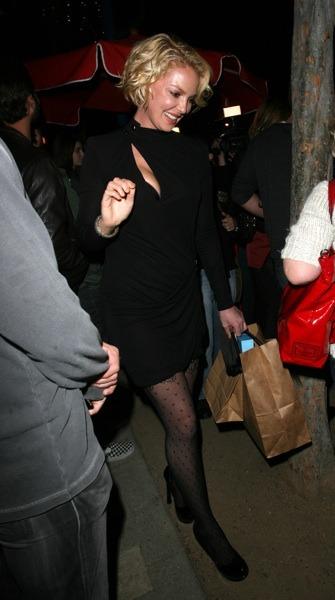 Katherine Heigl in long sleeve dress