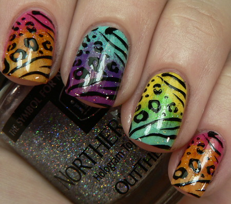 Home Gallery Design on Multi Color Animal Print Nails   Cool Nail Designs