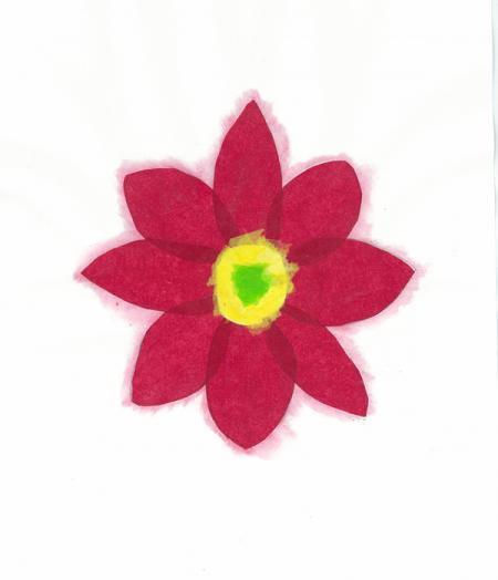 Phoenix Children's Hospital Poinsettia Holiday Card 2009