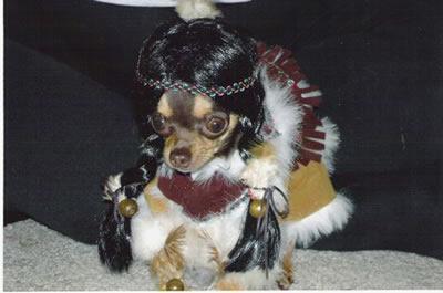 Pocahontas dog