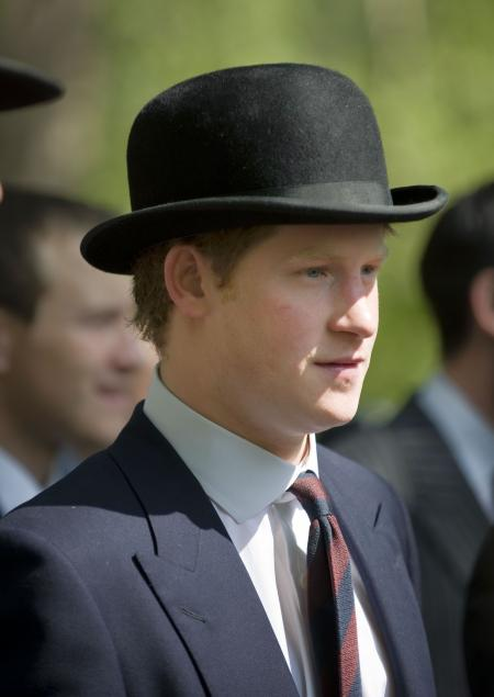 Prince Harry Royal Horse