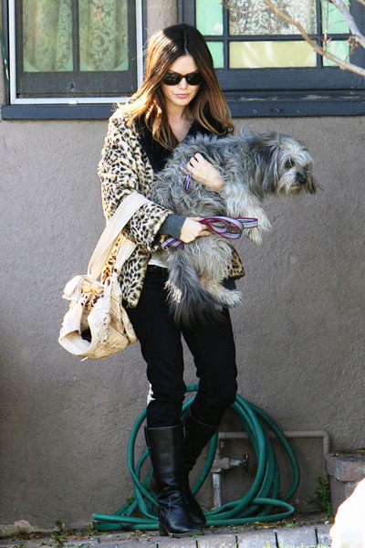 Rachel Bilson carries her pet pup