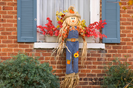 Not-so-scary scarecrow