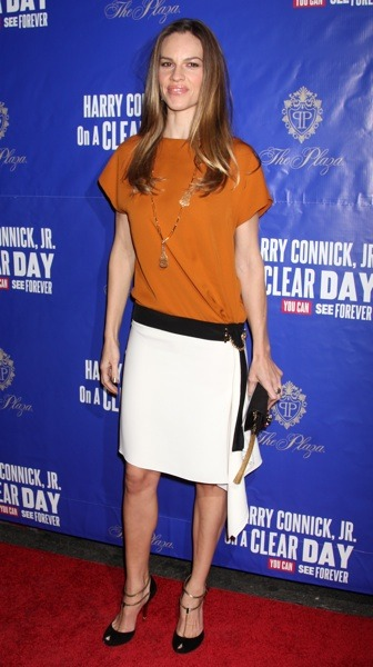 Hilary Swank in copper top