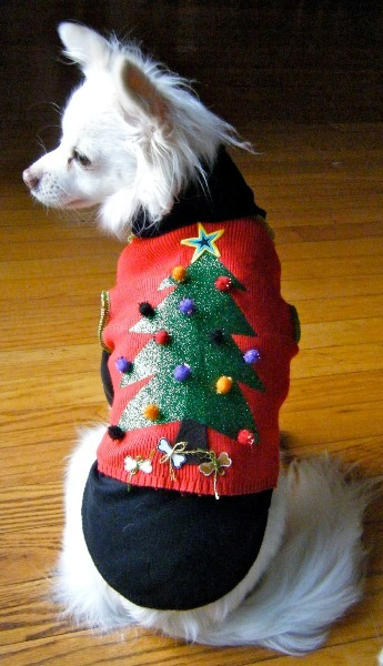 Ugly Puppy Sweater